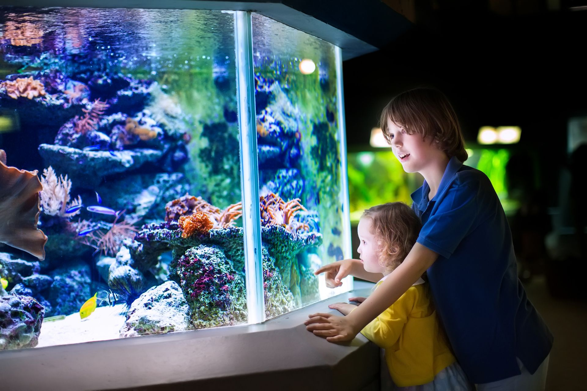 Ferienpass Aquarium