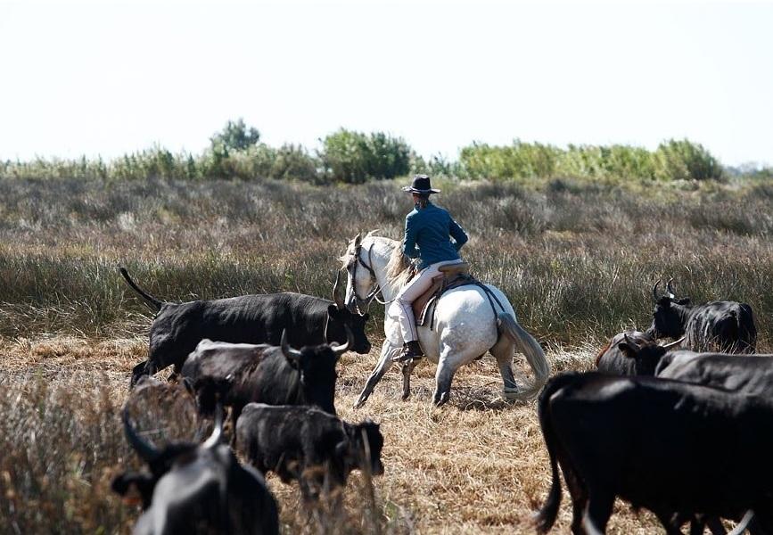 Provence Klassenfahrt