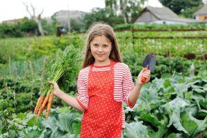 Wenn sich Schüler erst einmal für eine freiwillige Veranstaltung wie z.B. eine Garten-AG angemeldet haben, ist diese für den Rest des Schuljahres verpflichtend.