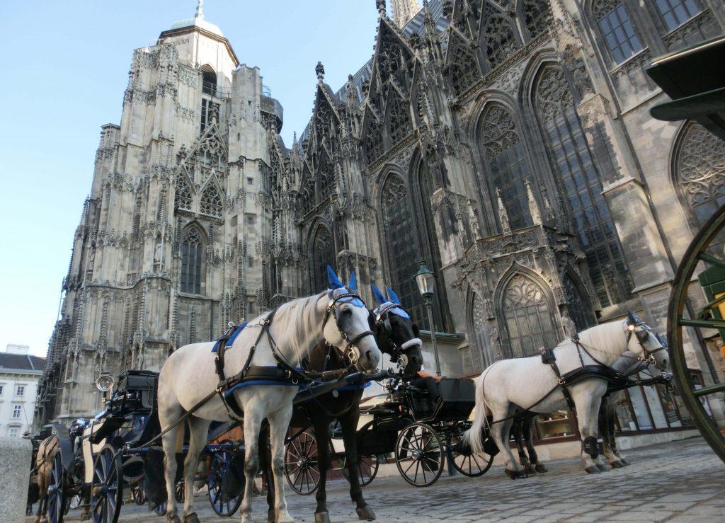 Blick auf einige Kutschen vor dem Stephansdom in Wien