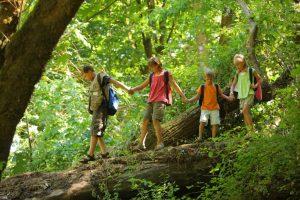Schülergruppe wandert durch einen Wald
