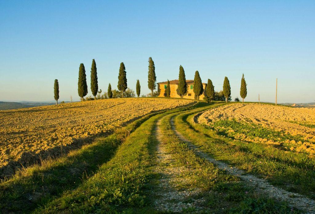 Auch abseits der Städte sehenswert: Die toskanische Landschaft beeindruckt mit sanften Hügeln und Zypressen.