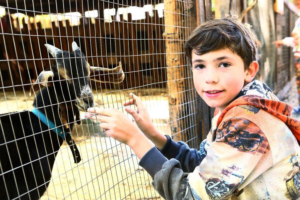 Ein Zoobesuch in den Ferien bietet sich hervorragend an