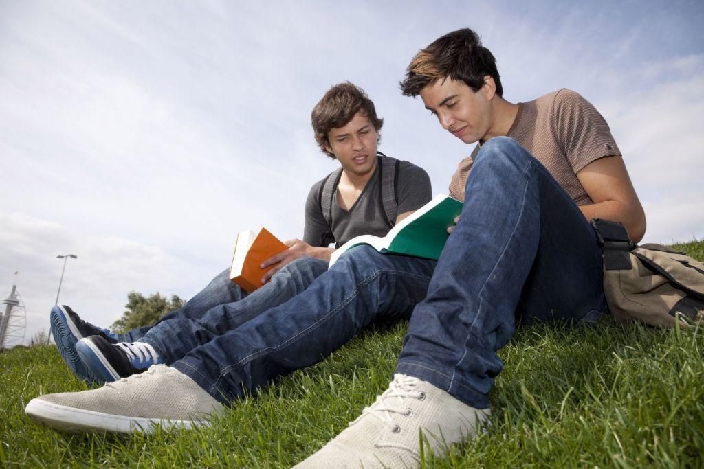 Blick auf zwei Jungs, die auf der Wiese ein Buch lesen
