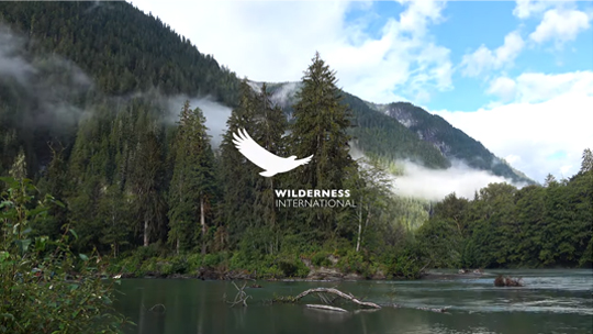 Kooperationspartner Wilderness International